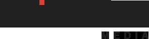 Logo BGWhite (295x78)